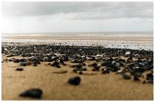 Plaża podczas odpływu.