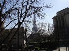 Wieża na tle Paryża- Trocadero